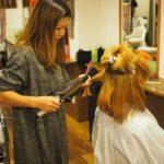 【サロカリアカデミー】美容師のレッスンは本来楽しいはずじゃない?好きな人に好きな技術を学ぶ時代
